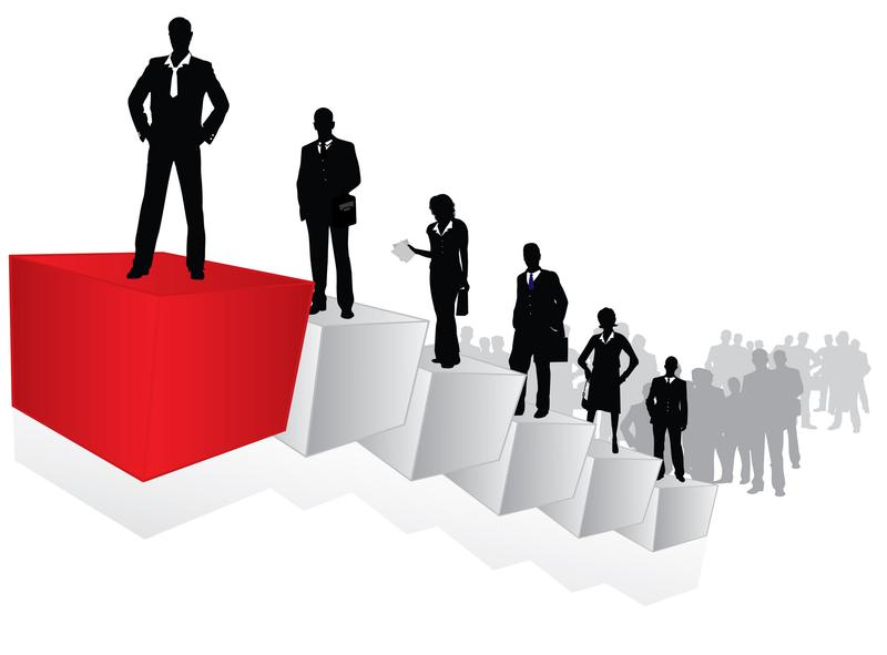 management_career_path by .